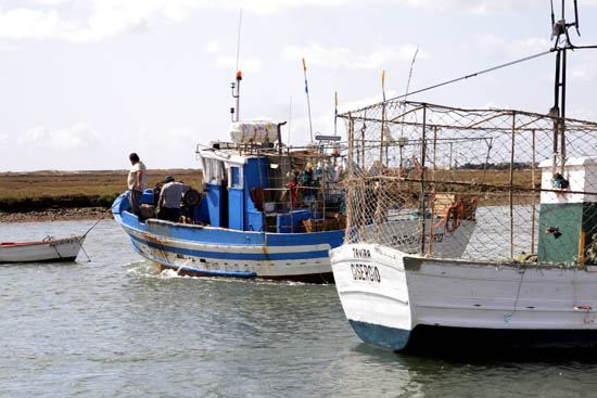 Barcos em santa_luzia