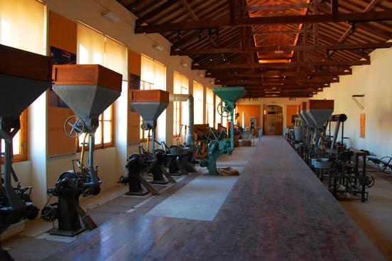Museu da Cortiça