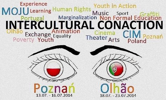 Intercultural Conaction