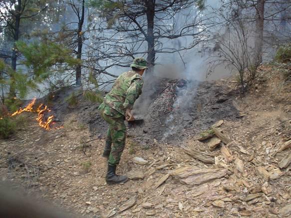 Militar a ajudar a combater incêndio_Site do Exército Português