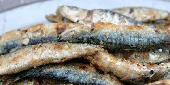 A melhor sardinha assada é em Portimão de 13 a 17 de agosto - Arquivo CMP_Filipe da Palma