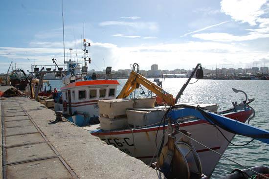 porto de pesca de portimão