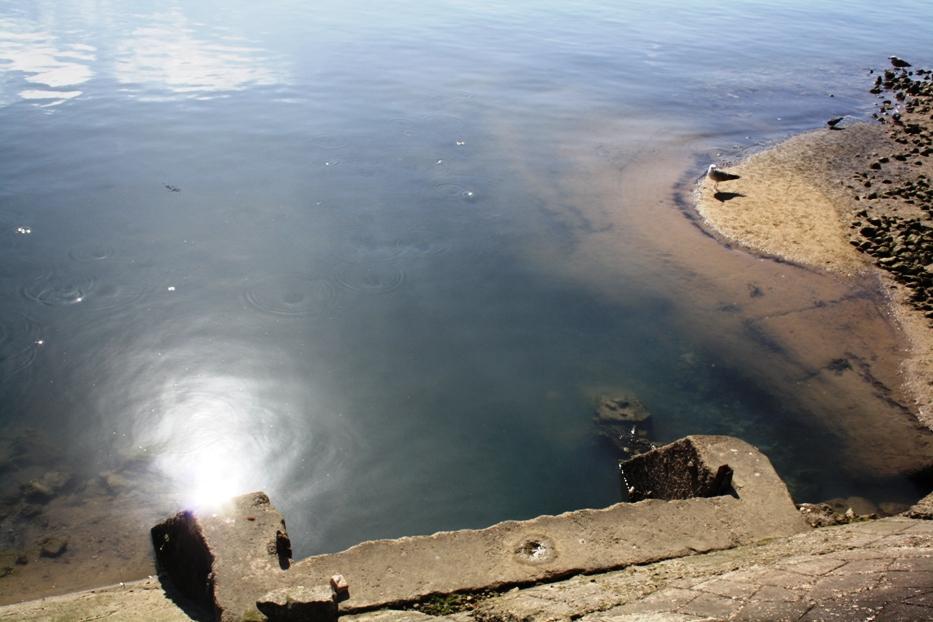 Deputados do PSD conhecem emissões de esgotos para a Ria Formosa_3