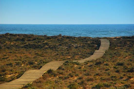 Ilha Deserta_cfs_7