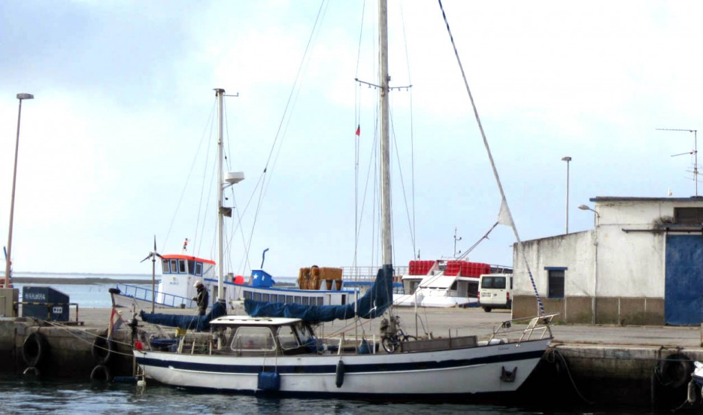 Veleiro Tobitoo encalhou ao largo da Ilha Armona