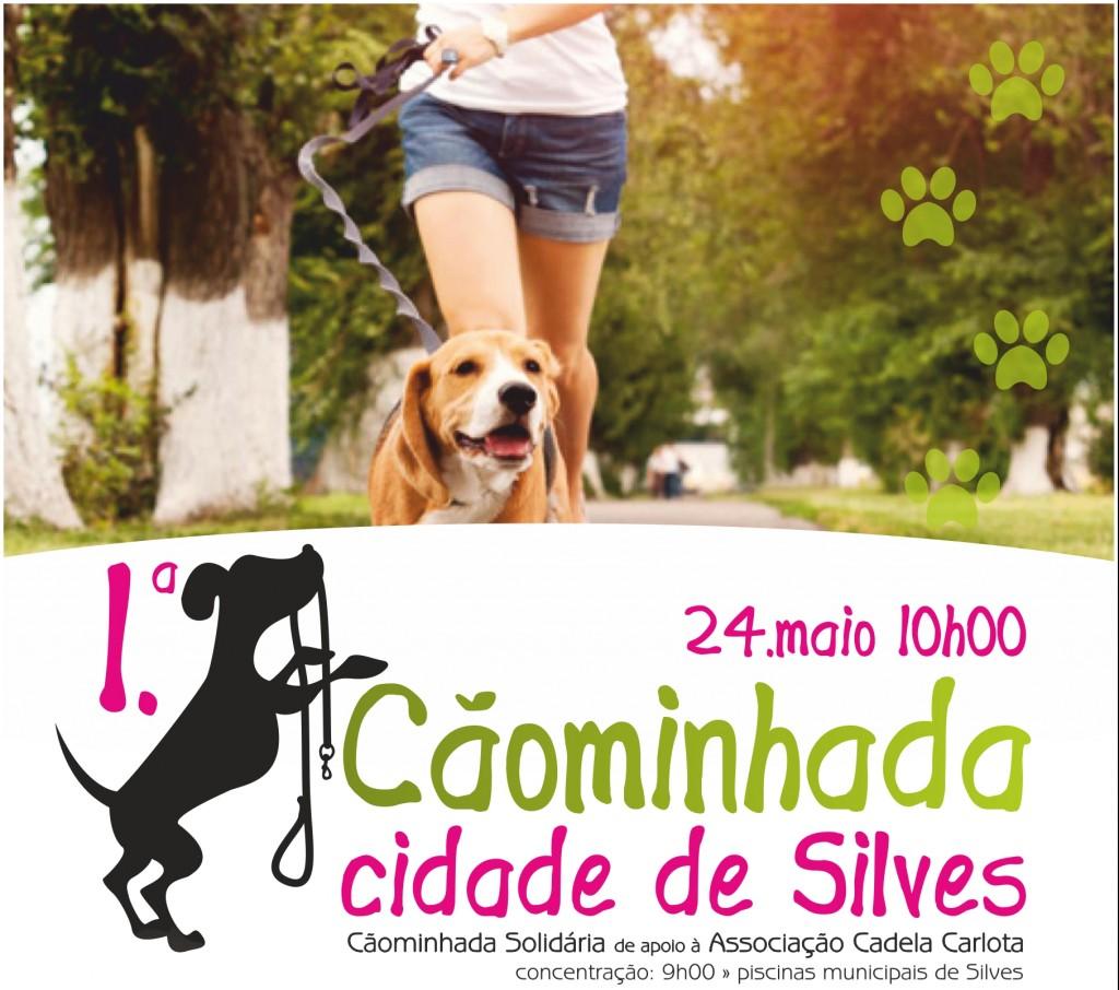 cartaz caominhada cidade de silves