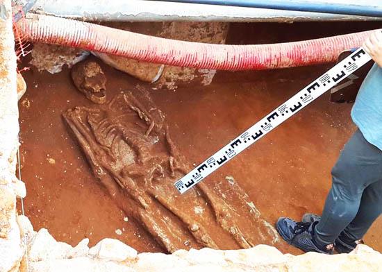 esqueleto romano desdentado_2