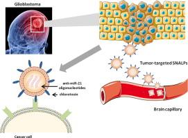 nanoparticulas para tratar tumores cerebrais