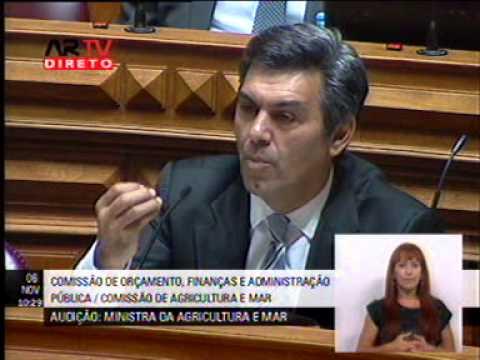 Miguel Freitas numa audição a Assunção Cristas