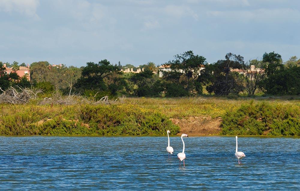 Ria_© Associação de Turismo do Algarve