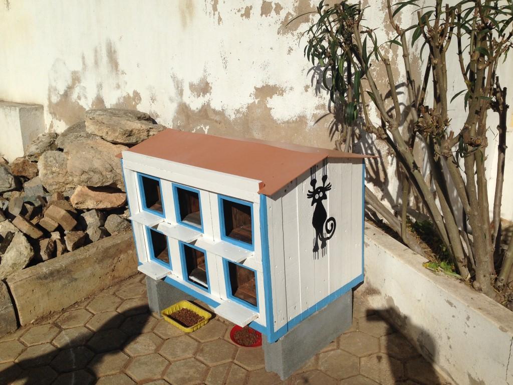 Casa Gatos (Medium)