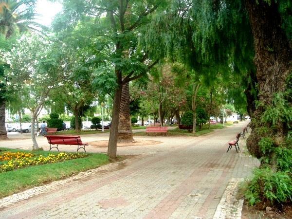 Jardim Cancela de Abreu (1)