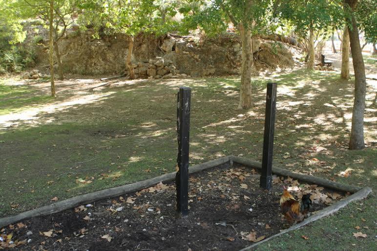 Degradação no Parque da Juventude, que sofre primeiras obras desde abertura em 1996