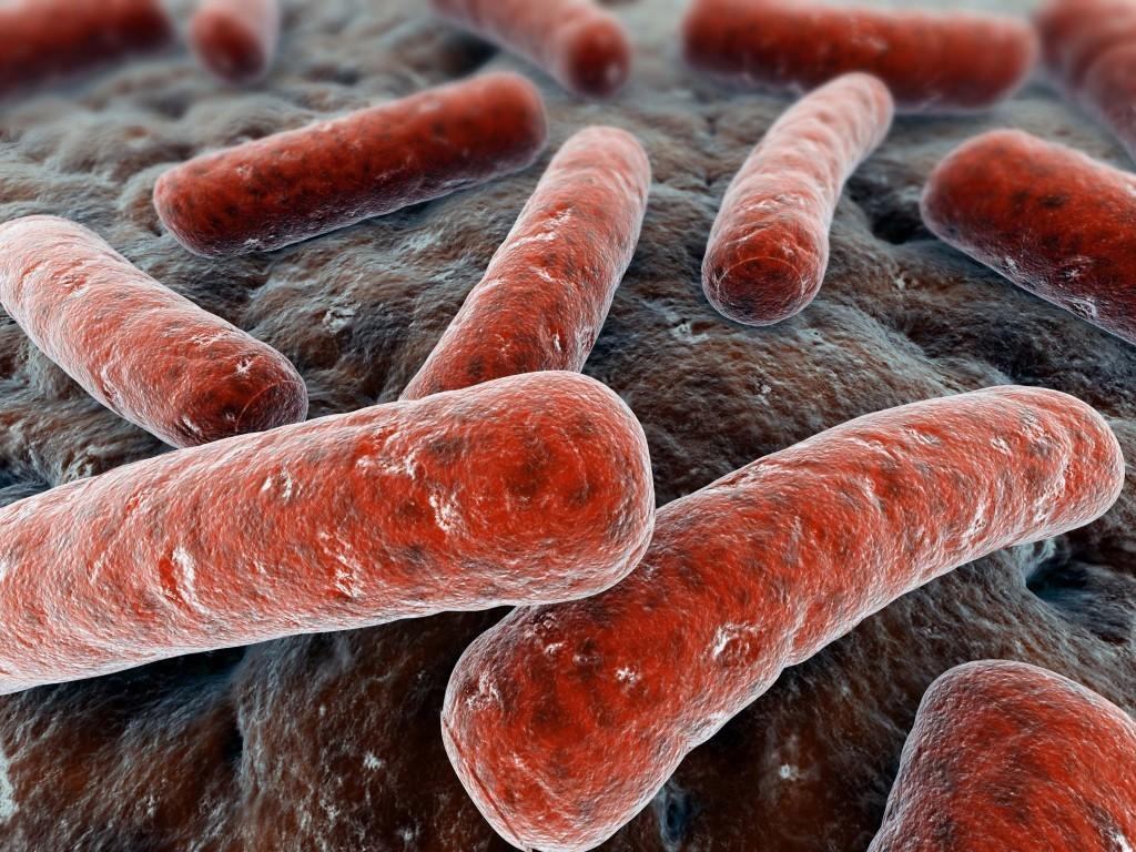 tuberculose-1024x768