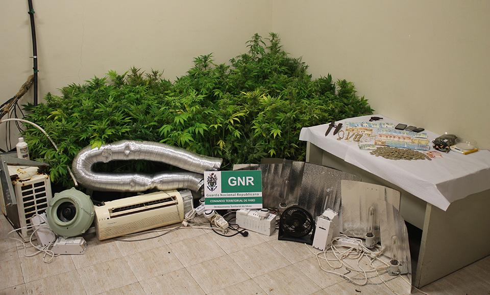 GNR desmantela principal ponto abastecimento Silves