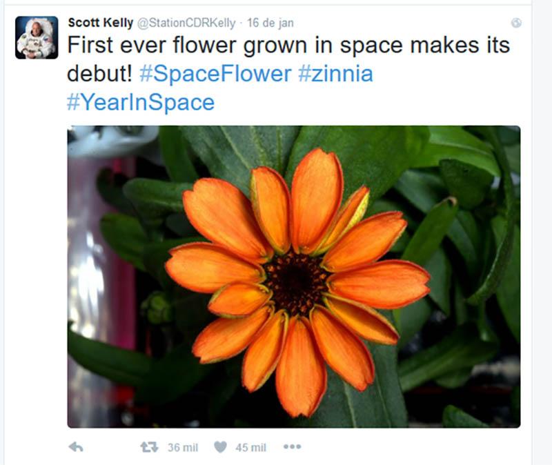 tweet do astronauta