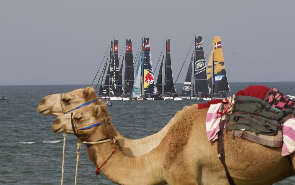 Sail Portugal_Muscat_5