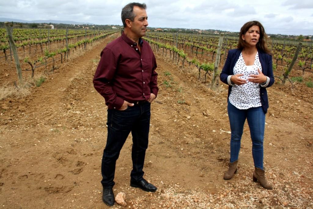 Vinhos do Algarve Press Tour CVA 2016_16