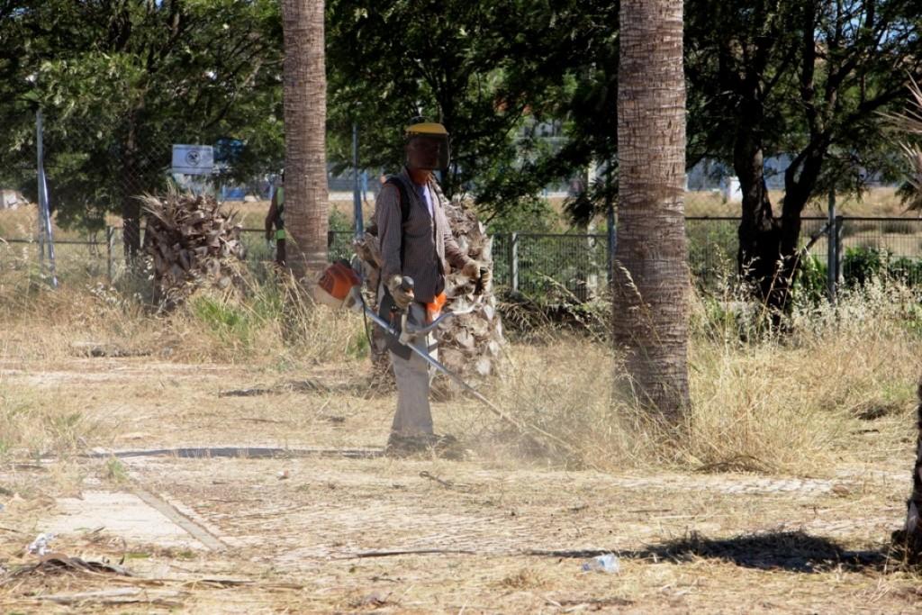 Castro Marim Limpeza Espaços Florestais