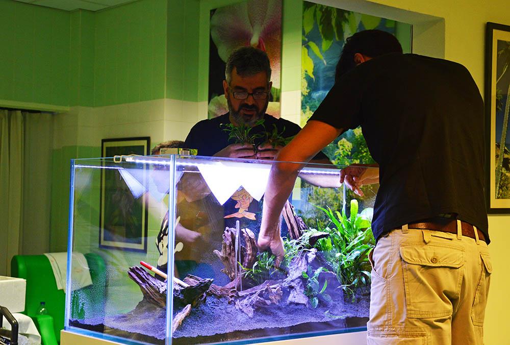 aquário no hospital de portimão_03