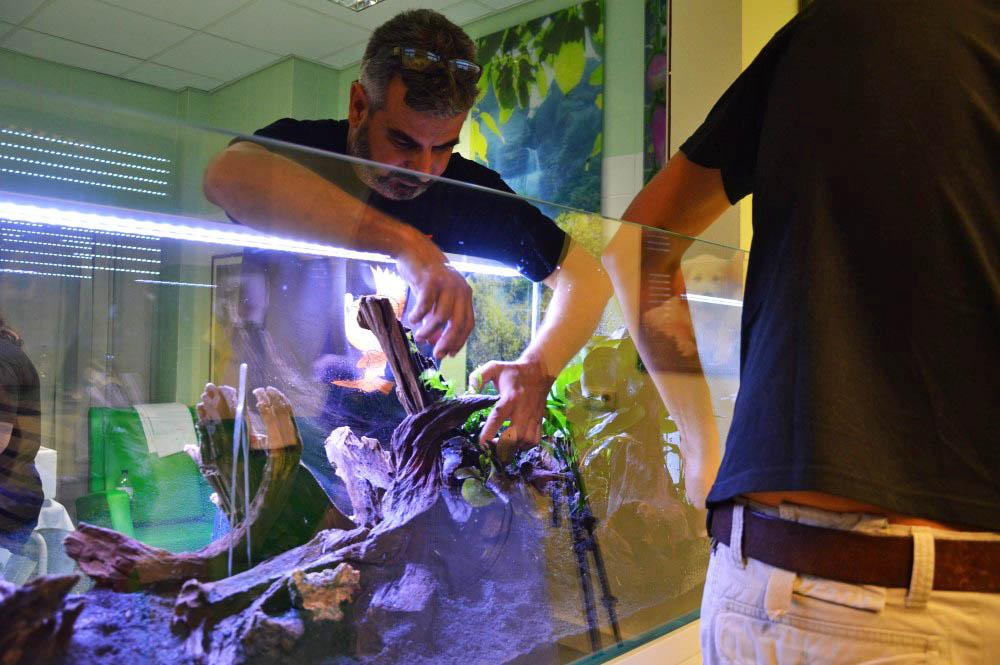 aquário no hospital de portimão_07