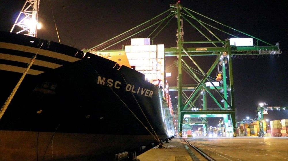 MSC_Oliver (Custom)