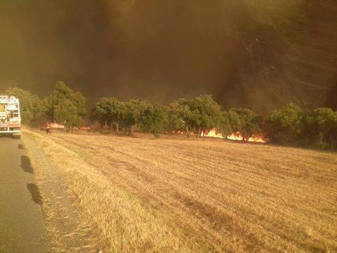 incêndio em Messines