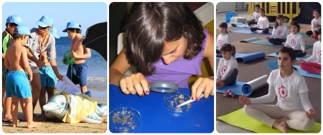 Atividades para crianças no Festival de Birdwatching de sagres