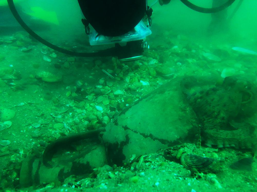 Mergulhador com a ânfora