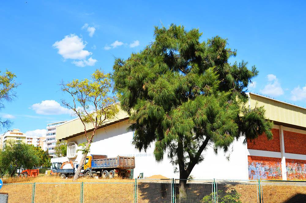 Pavilhão Escola Afonso III_1