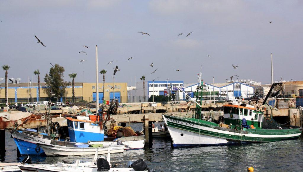 Porto de Pesca Olhão Novembro 2016_HR_6