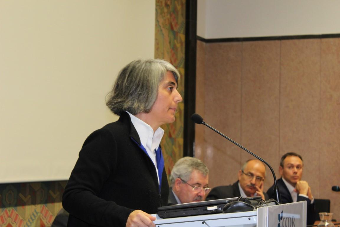 Graça Fonseca, secretária de Estado Adjunta e da Modernização Administrativa
