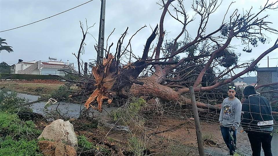 Vento forte corta eletricidade em Faro e Olhão