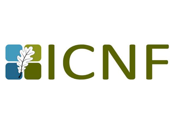 Resultado de imagem para ICNF abre concurso para contratação de trabalhadores
