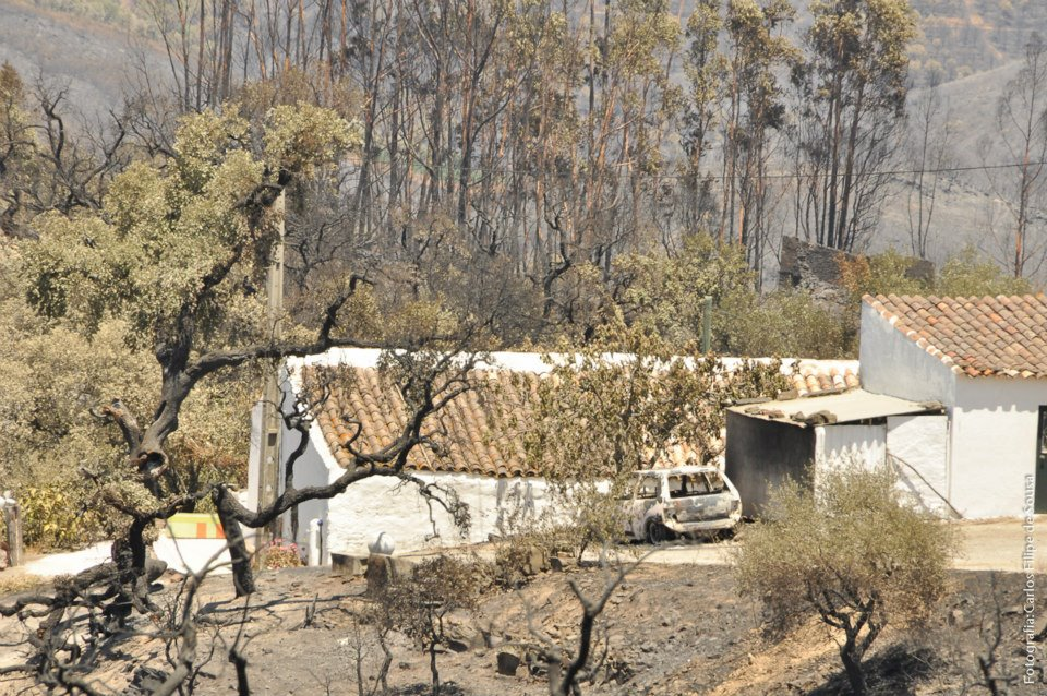 Consequências do Fogo na Serra do Caldeirão