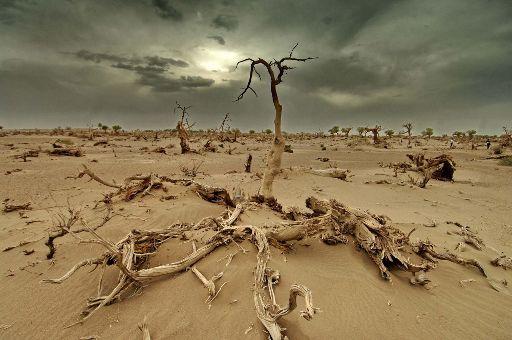 alterações climáticas_1