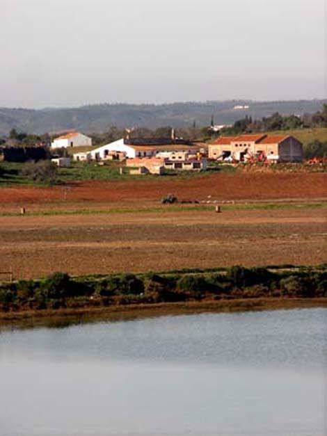 Já depois dos primeiros embargos, lavras ilegais na Quinta da Rocha